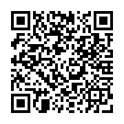 bitfinex referral code